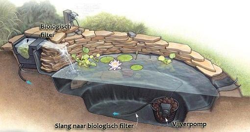 Vijvermaterieel vijverpomp biologisch filter en uvc filter for Natuurlijke vijver zonder pomp